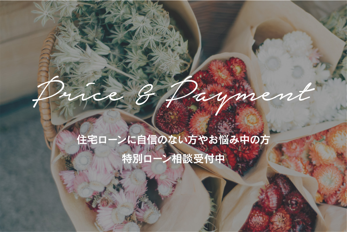 Price&Dayment
